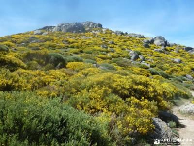Reserva Natural Valle Iruelas-Pozo de la nieve;agencia de viaje embalse de navacerrada parque monfra